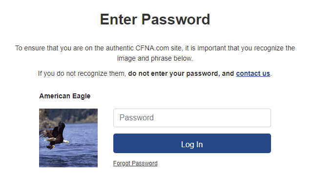 Sign In key and password form